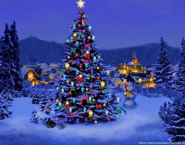 Click image for larger version.  Name:600x470-Christmas-Tree-Nature1024-226431.jpg Views:5 Size:46.2 KB ID:42988